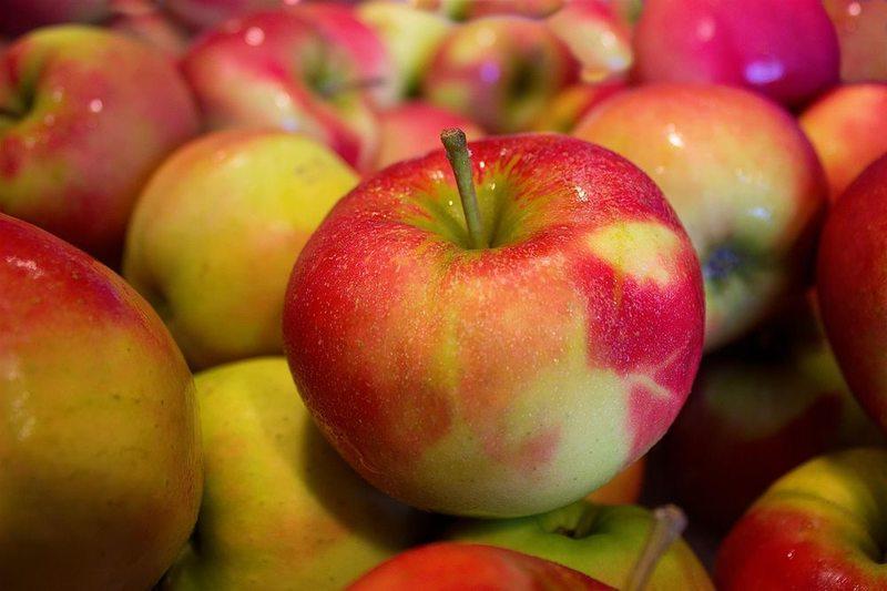 Les fruits de Rochemaure