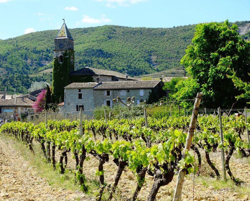 Visite du village et balade viticole à Valvignères