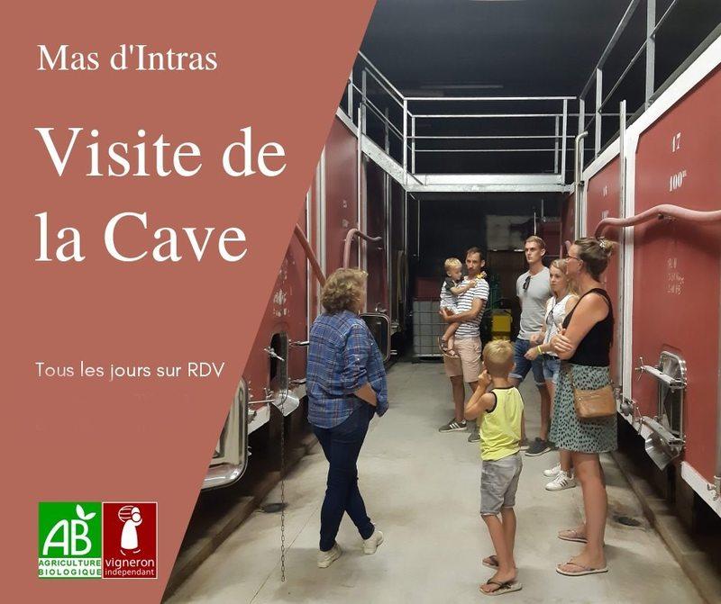 Visite de la cave - Gaec du Mas dIntras