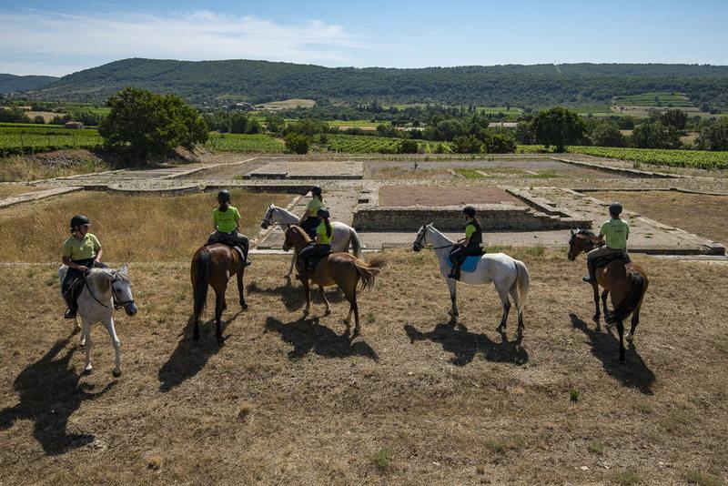 Promenade et randonnées à cheval avec Alba équitation