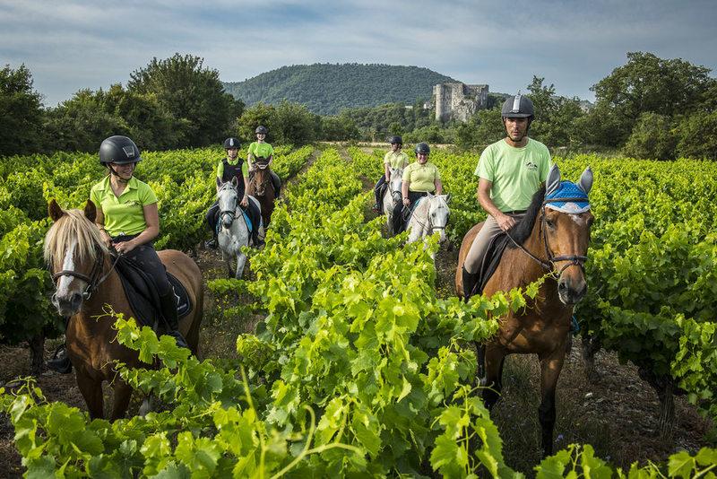 Promenades et randonnées à cheval avec Alba Équitation