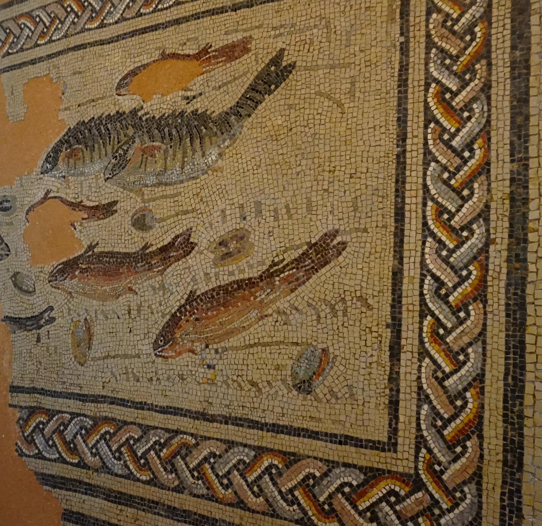 museal-musee-archeologique-alba