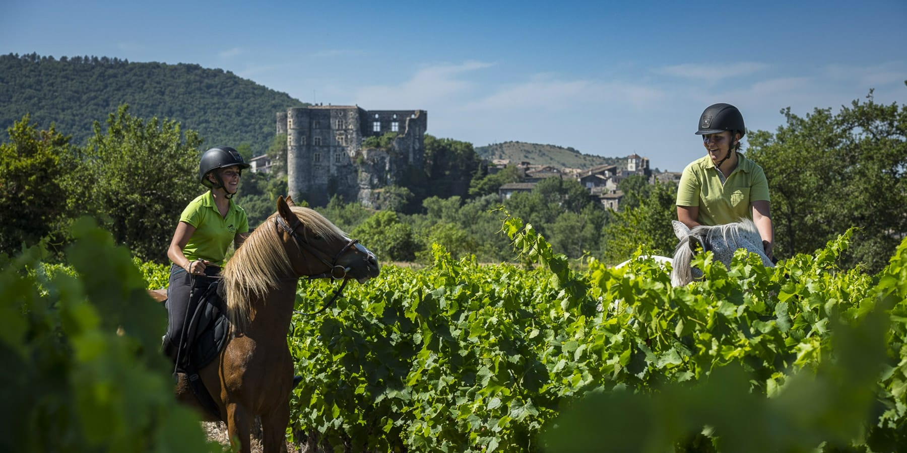 Alba-chateau-cheval-equitation-vignes_1800x900_acf_cropped