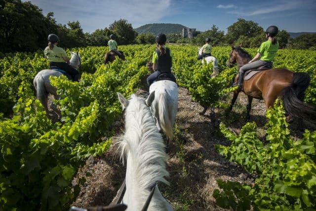 2000 Vins d'Ardèche - Site antique d'Alba-la-Romaine, le 8 juillet 2019.